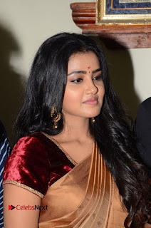 Actress Anupama Parameswaran Stills in Silk Saree with Shatamanam Bhavati Team at Sandhya Theater  0005.JPG