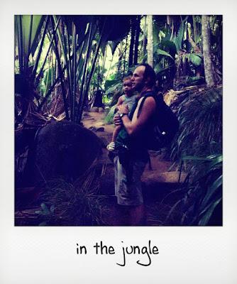 Escursioni per bambini alle Seychelles: le Vallée de Mai