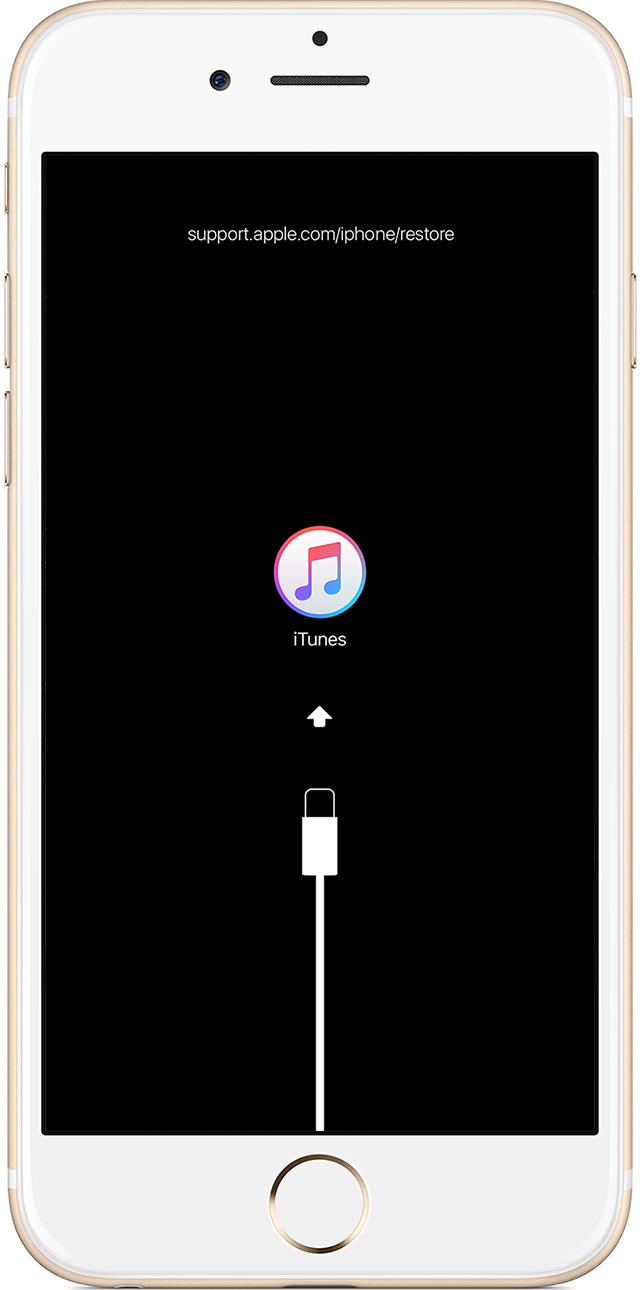 Support Apple Com Iphone Restore Iphone C