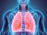 Varios consejos para evitar enfermedades respiratorias