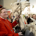 Franceses levam até camelo e lhama para arcebispo abençoar