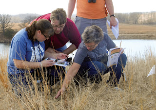 group of people examining and taking notes in long grass