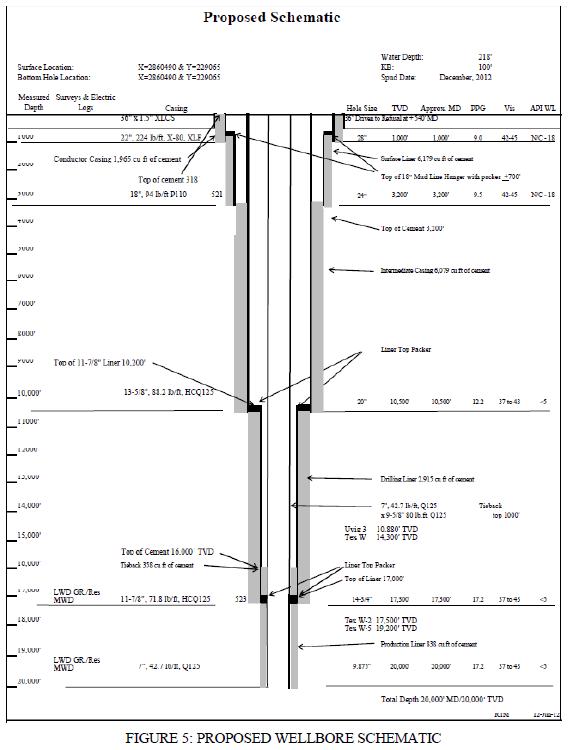 Wellbore Diagram Template