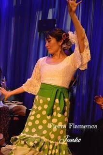 Fin de curso de Tierra Flamenca 2017