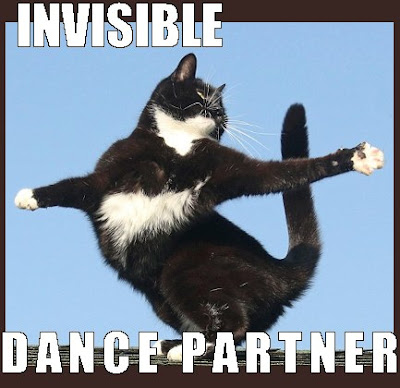 Cat Dancing invisible