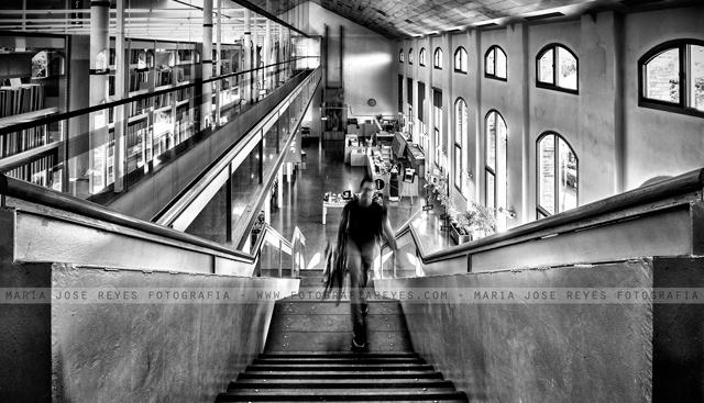 Biblioteca Tecla Sala L Hospitalet de Llobregat