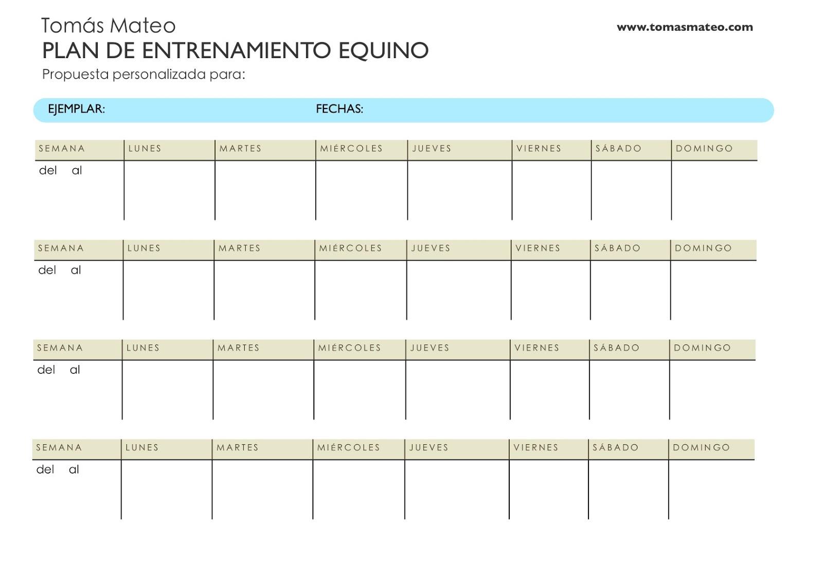 Tomás Mateo_Entrenamiento Equino: Una herramienta muy útil para ...