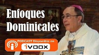Enfoques Dominicales
