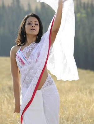 Trisha navel hot in saree