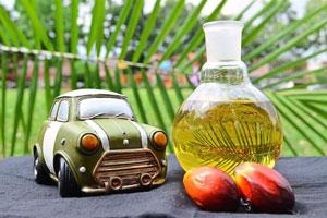 Energi alternatif yaitu Biodiesel