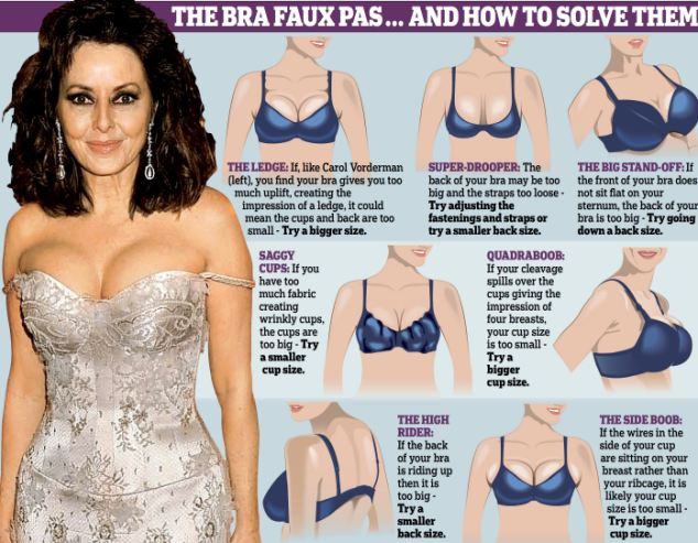 Each Breast Size with a Different Bra