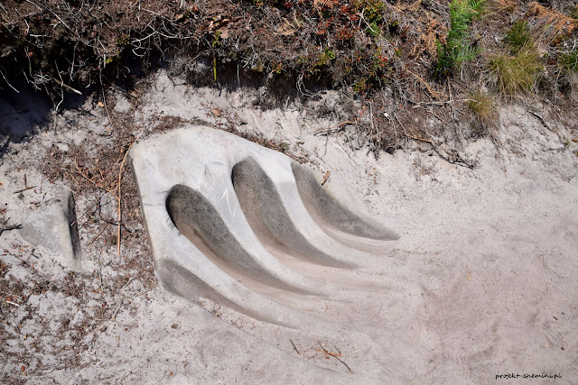 Hruboskalsko- formy skalne na żółtym szlaku