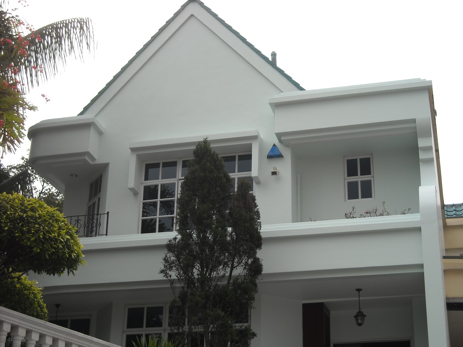 Pro House Painting & Handyman work: Exterior Wall Painting