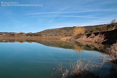 http://www.biodiversidadvirtual.org/geologia/Escarpe-principal-de-deslizamiento-en-el-Lago-Grande-de-Abajo-de-las-Lagunas-de-Estana-img8575.html
