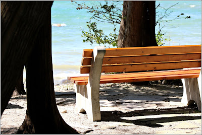 September 2, 2018 Finding a beautiful place to sit and rest as we walk the board walk in Port Elgin