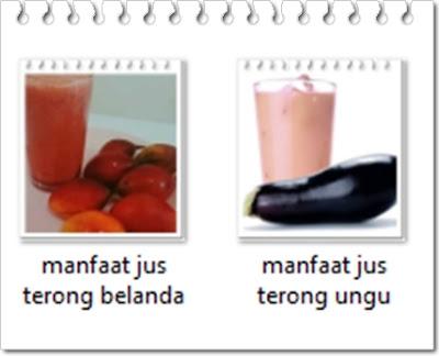 Manfaat jus terong ungu dan belanda serta cara membuatnya