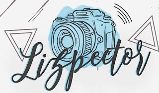 Logo blog Lizpector
