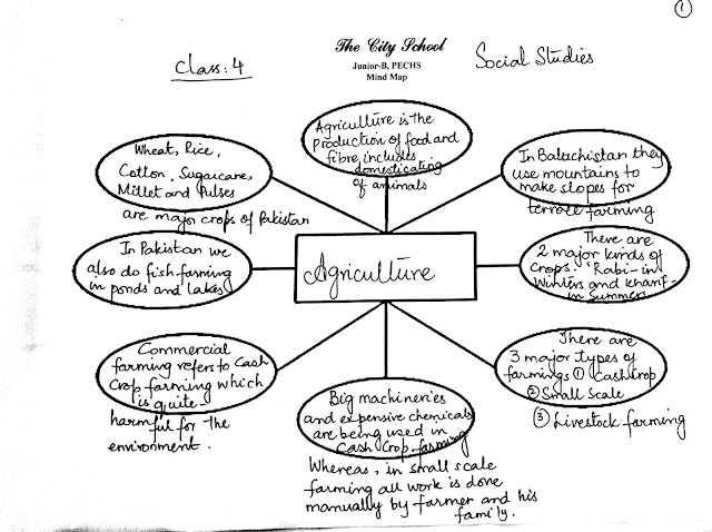 The City School: Grade 4 Social Studies Revision Worksheet