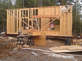 Diligence In Our Home Sheathing Lofts And Roofing