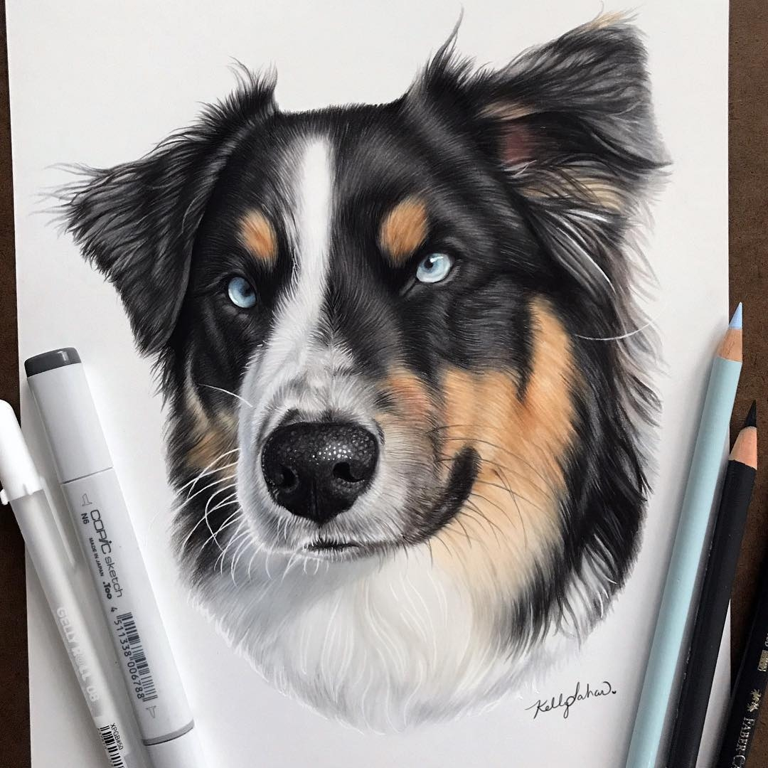 07-Blue-Eyes-Kelly-Lahar-Realism-with-Animal-Portrait-Drawings-www-designstack-co