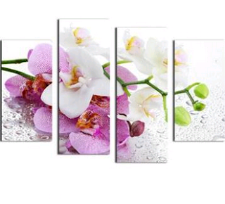 www.banggood.com/Orchid-Paintings-4Pcs-Combination-Printed-On-Canvas-Frameless-Drawing-Home-Wall-Decor-Gift-p-1024408.html?utm_source=sns&utm_medium=redid&utm_campaign=recenzije11&utm_content=chelsea