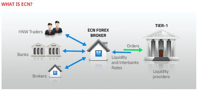 True ECN гэж юу вэ?
