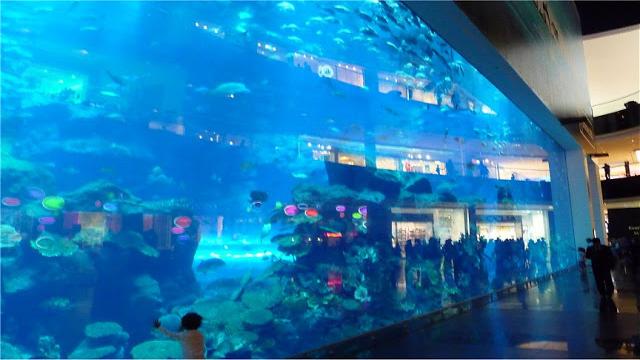 Shopping: tra Dubai Mall e Mall of Emirates