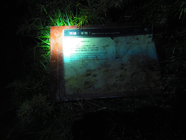 IMG 5942 - 台中登山│台灣第二高峰,雪山主峰、東峰兩天一夜攻頂!這兩天是我最難熬的一夜