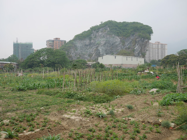 a field and crag in Yunfu