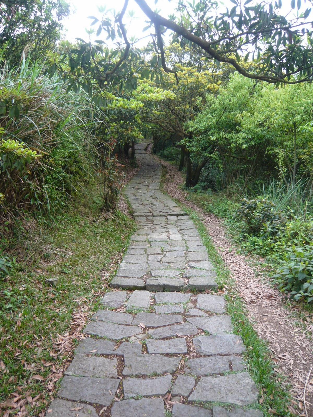 Fiona 簡單生活: 臺北市。陽明山。冷水坑
