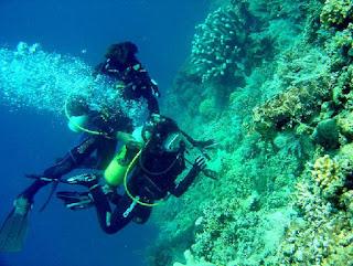 Diving di pelabuhan ratu