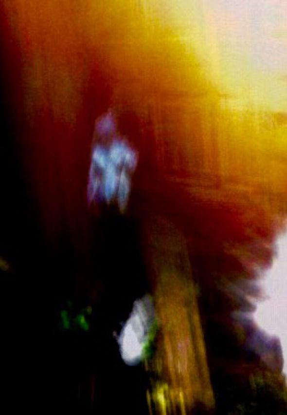 Una mujer reportó a MUFON unas imágenes que afirma haber fotografiado antes de ser abducida.