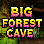 Games4King Big Forest Cav…