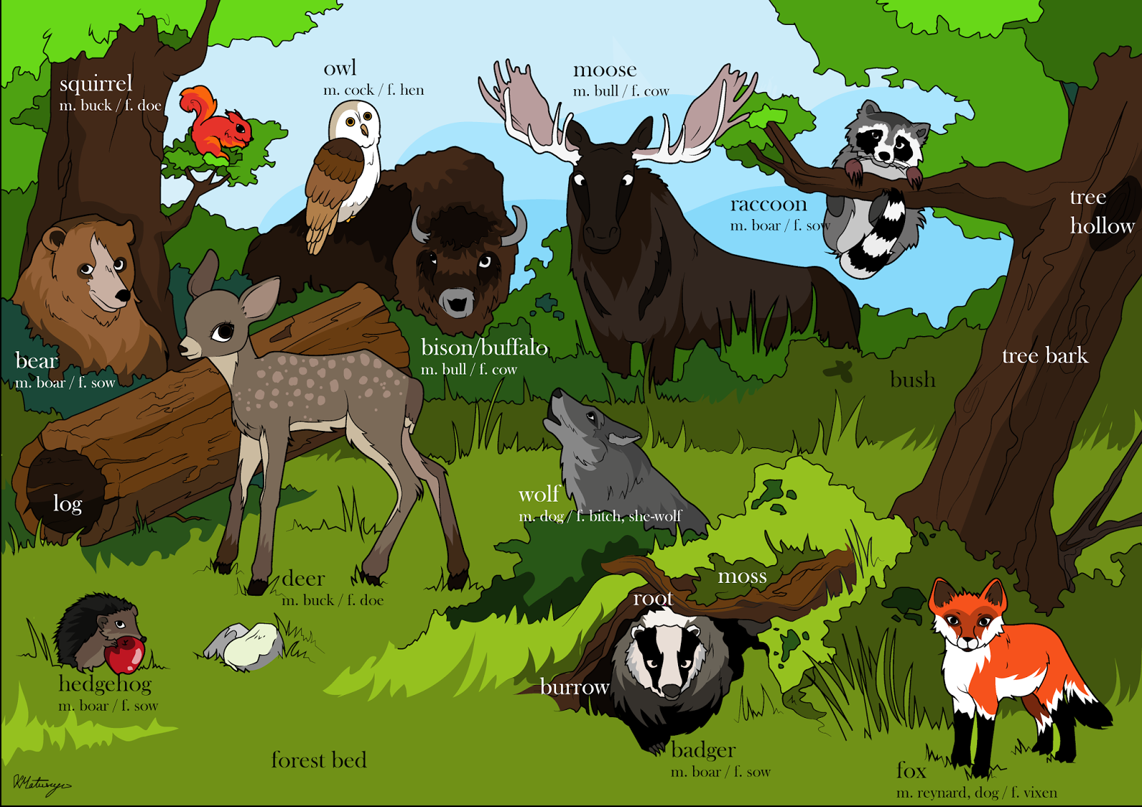 environment with animals -#main