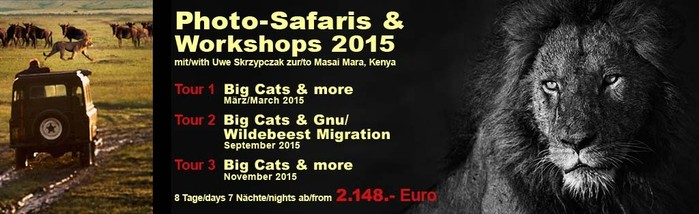 Fotografie, Safaris, Workshops, Kenia, Uwe Skrzypczak, Serengeti Wildlife, lions, cheetahs, wildlife photography,