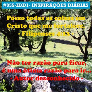 055-IDD1- Ideia do Dia 1