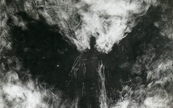 Enormous Black Winged Cryptid Observed in Tukwila, Washington
