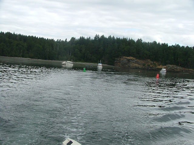 Shallow Bay entrance buoys on Sucia Island
