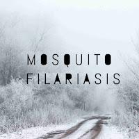 Mosquito transmit filariasis