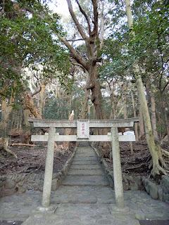 伊豆大島の旅 大宮神社