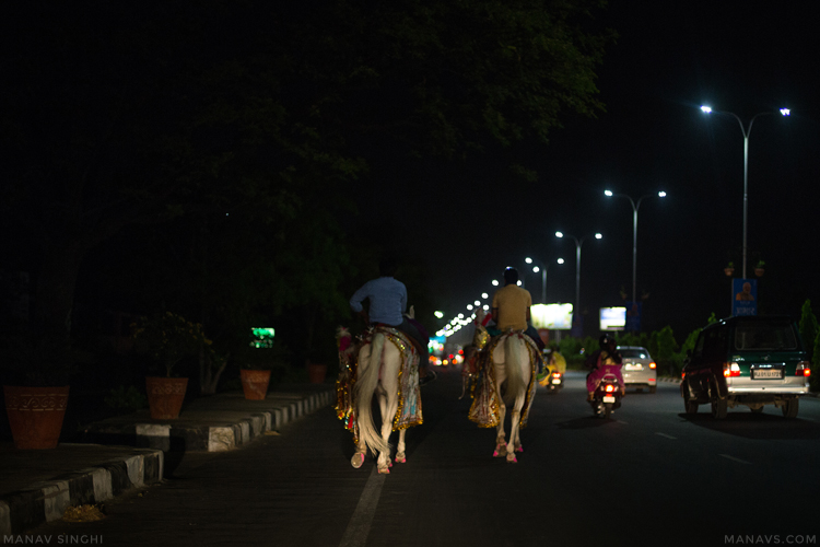 Horsing Around on JLN marg, Jaipur.