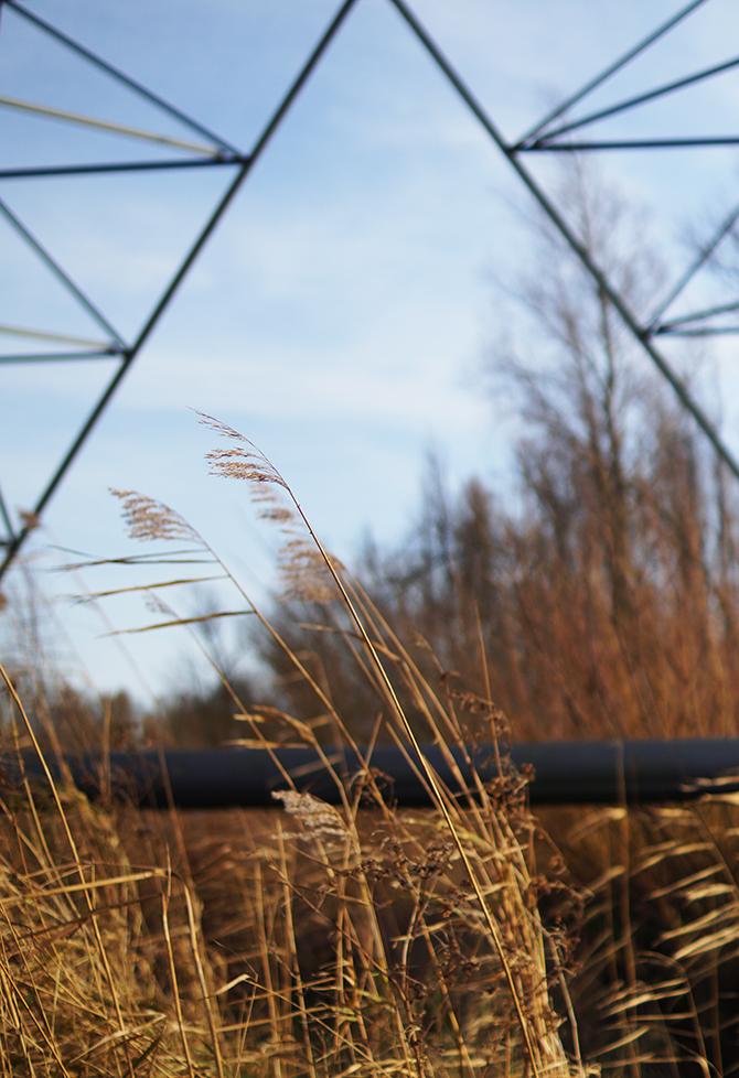 natuur fotograferen