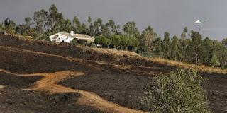 http://www.efeverde.com/noticias/el-mayor-incendio-de-andalucia-en-2016-causo-5-millones-en-perdidas/