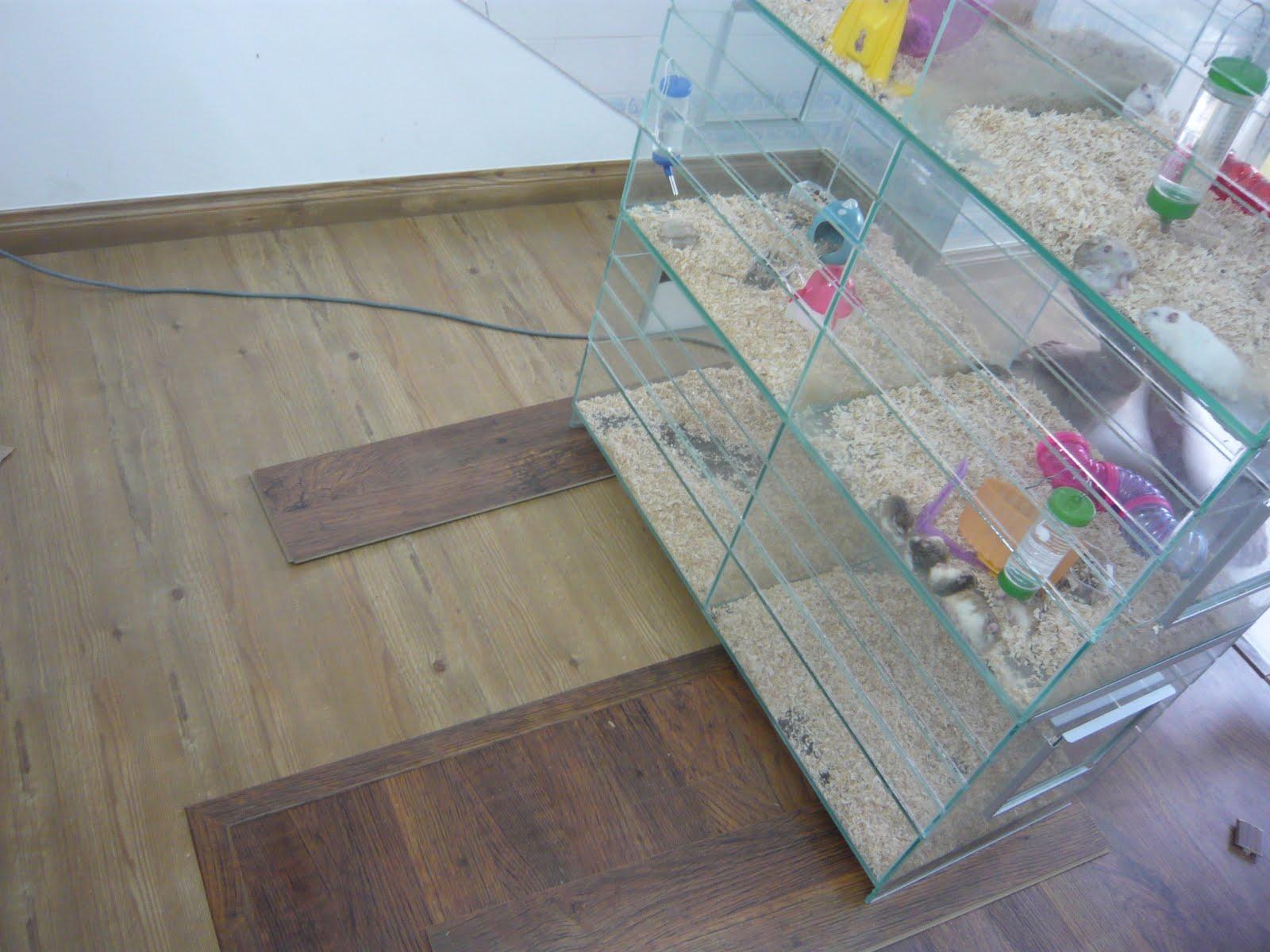 Repair Sofa Cushion Shah Alam Clear Plastic Table Laminated Flooring