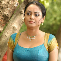 Meenakshi hot pics in saree