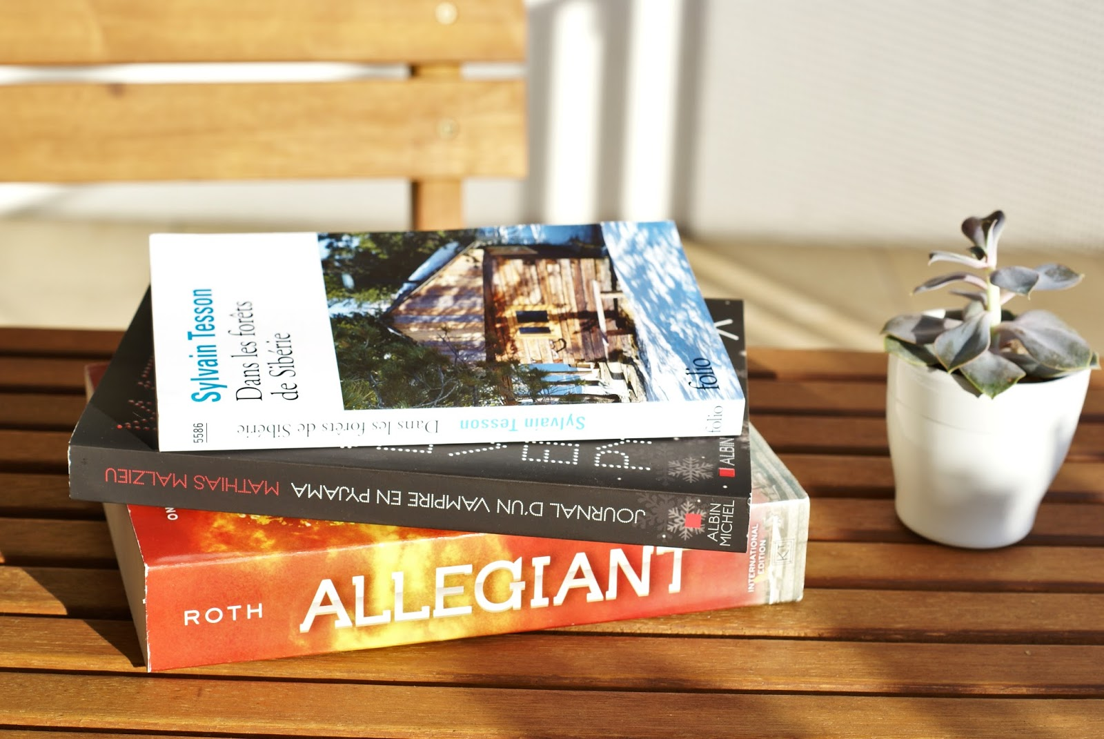 summer books livres allegiant divergent forêts sibérie tesson vampire pyjama malzieu