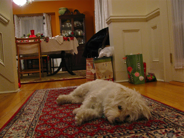Dog-Tired-and-Last-Bits-of-Christmas-Day