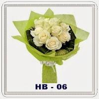 HB 06