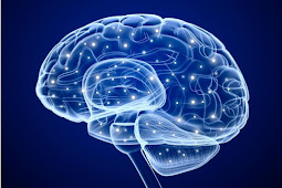 Bagaimana otak 'pelaku' berbeda dari orang yang suka menunda-nunda