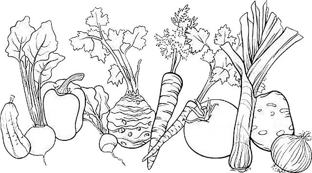 Gambar Mewarnai Sayuran - 4